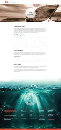 Web Design, UX, UI, Abalone Website, Blue, Corporate Web Design, Abalone Farming, Sea food, Footer Design