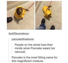 Pancake = great and brilliant