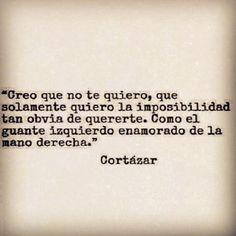 - Julio Cortazar -