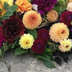 Autumn hues and texture 😍 A British love affair 😍 #britishflowers #underthefloralspell #autumnlove #loveautumn #huddersfield #yorkshire #grownnotflown