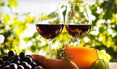 Wine Tour and Tasting for One, Two, or Four on a Weekday or Weekend at Danza del Sol Winery (Up to 60% Off)