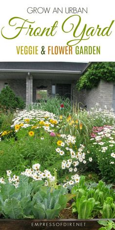 Grow An Urban Front Yard Veggie U0026 Flower Garden