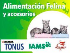 Alimentación Felina y Accesorios.