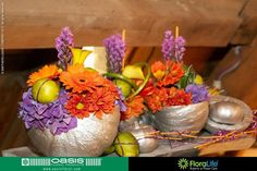 OASIS Floral Products BeNeLux