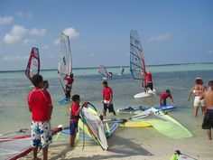 Windsurfing Kid's Bliss