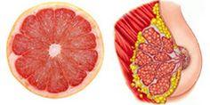 La Théorie des signatures est une méthode d'observation du monde des plantes médicinales selon laquelle la forme et l'aspect des plantes seraient en lien avec ses propriétés thérapeutiques. Voici 8 aliments qui participent au bon fonctionnement et qui pou