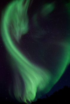 What if the Aurora Borealis of a fantasy world were actually made of dragons?