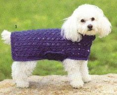 "DIY Cross Stitch Crochet Dog Sweater - a ""one size fits all"" style sweater"