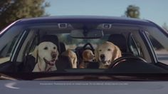 Subaru Dog Tested | Subaru Commercial | Phone Navigation ... Use to teach inference