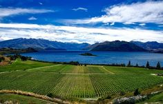 The Walkerton Canada E. coli Outbreak and its Worldwide Implication on Infrastructure Risk Management Practice – Inframanage Visit New Zealand, New Zealand Travel, Vacation Trips, Day Trips, Dream Vacations, Destinations, Excursion, Mountain Vacations, Asset Management