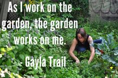 Gayla Trail - a.k.a. You Grow Girl  Great article: http://yougrowgirl.com/false-holly-garden-writing/#more-14123