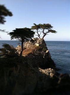 Monterey Bay via @Paula - bell'alimento