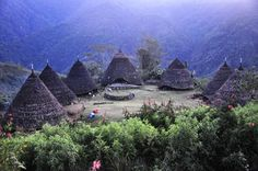 Waerebo, traditional village, Flores, NTT - Indonesia