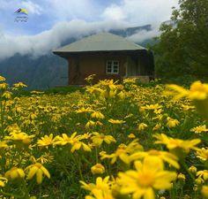 #Gilan #Talesh Land #Iran