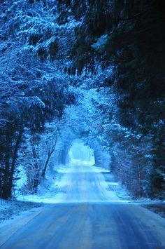 Nature - Blue winter light.