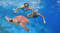 Enjoy Red sea Snorkeling Trip from Hurghada to Giftun Islands with Sharm Wonders. Amazing Red Sea snorkeling trip in Hurghada Panama City Beach Florida, Panama City Panama, Barbados, Best Snorkeling, Sharm El Sheikh, Egypt Travel, Shore Excursions, Koh Tao, Red Sea