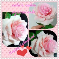 pale pink wired gum paste rose