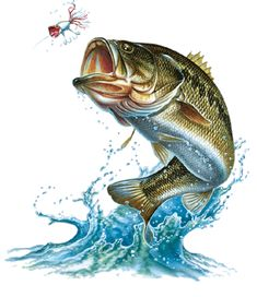 Top Painting Largemouth Bass Tattoo Tattoo's in Lists for Pinterest