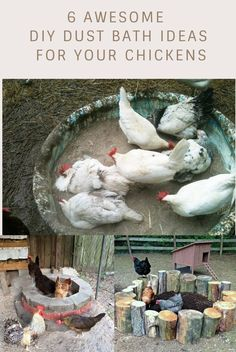 Need to make a dust bath for your chooks? Here are some great ideas for you! #chickens #chickenkeeping #dustbath #DIY #farmlife #homesteading #Stump #pallets #plasticbins #oldtires #bricks #kiddiepool