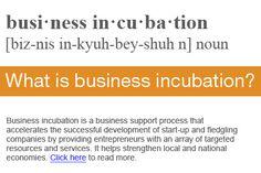 - National Business Incubation Association