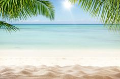 Summer sandy beach with blur ocean on background