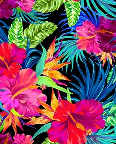 Drive You Mad Hibiscus Pattern