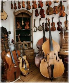 Double basses, violins and other instruments in a shop