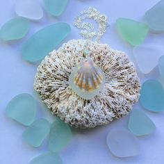 Sterling Silver Hawaiian Sunrise Shell and Sea by GirllovesSea