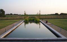 www.hoveniersbedrijf.be natuurlijke zwemvijver - zwemvijvers - exclusieve groenconcepten