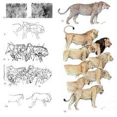 Velizar Simeonovski, possible depiction of a cave lion