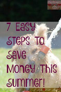 Save money this summer 7 easy ways ~ #FrugalSpoonieFridays #ChronicFridayLinkup http://alifewellred.com/save-money-this-summer-7-easy-ways/