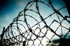 Check out Barbed Wire Fence by BrightSpace on Creative Market