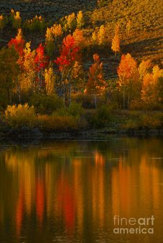 ✯ Last Light At Oxbow Bend