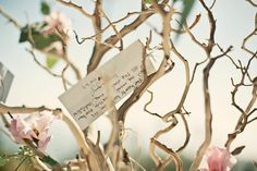 wishing tree | ... wishing tree 'guest book' and lavender sachet favors handmade by