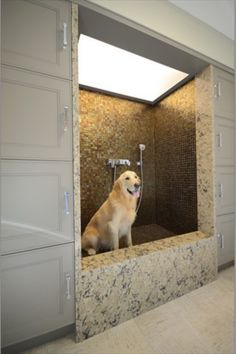 Great doggie bath or shower idea for your mudroom or laundry room. I want one of these!