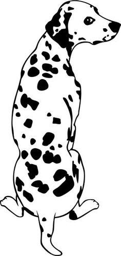 Commandez dès maintenant notre Sticker chien - dalmatien. Les Contemplatives - Spécialiste sur Internet pour tous vos achats de STICKERS ANIMAUX / adultes.