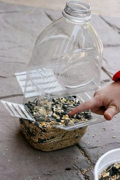 Sparklinbecks: DIY bird feeder