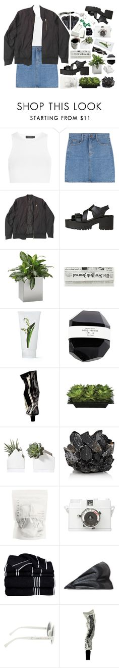 """- ̗̀  the seed's in my head"" by sunkissed-peaches ❤ liked on Polyvore featuring Calvin Klein Collection, ASOS, Windsor Smith, Jan Kurtz, PENHALIGON'S, Aesop, Lux-Art Silks, McCoy Design, Lomography and Hot Topic"