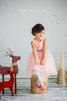 Michigan family and children photographer  Christmas mini sessions ideas 2014 Photo by Emma Burcusel