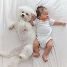 The 27 Most Adorable Baby And Dog Friendships Of 2013