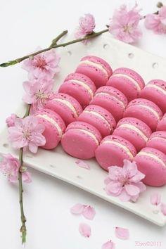 Sakura Macarons