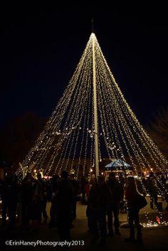 Christmas Tree of Lights