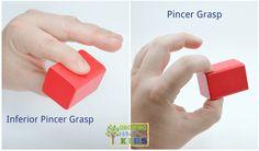 Inferior pincer and pincer grasp, typical pencil grasp development in children.