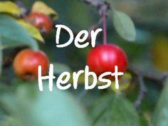 Learn German: Der Herbst