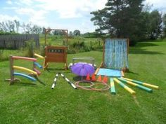 Miniature Horse jumps and Obstacle Courses