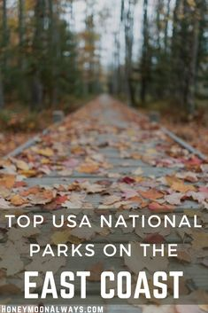 The US National Park Service maintains several parks and other recreational areas on the east coast, including the most visited park in the US and some of the most unique landscapes. The parks can provide anything from a secluded mountain getaway to scuba diving. Here are the best east coast national parks and other areas managed by the US National Park Services. Honeymoon On A Budget, Honeymoon Planning, Honeymoon Ideas, Honeymoon Destinations, Trip Planning, Romantic Getaways, Romantic Travel, Cool Places To Visit, Places To Go