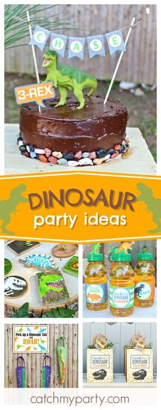 Check out this awesome Dinosaur Excavation Party! The cookies are so much fun!! See more party ideas and share yours at CatchMyParty.com #dinosaur #party
