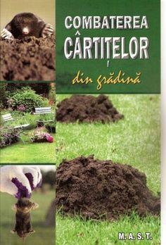 Garden Pool, Magnolia, Cardigan, Gardening, Urban, Books, Home, Agriculture, Plant