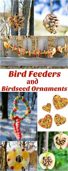 20 Homemade Bird Feeders, Bird Feeders for Kids, These Homemade Bird Feeders and birdseed ornaments are easy to make and they look so nice hanging on the trees. Your kids will love making Apple Bird Feeders, Pine Cone bird feeder and Bird Seed Ornaments Bird Crafts, Nature Crafts, Garden Crafts, Garden Art, Recycled Crafts, Mardi Gras Party, Bird Seed Ornaments, Christmas Ornaments, Garden Ornaments