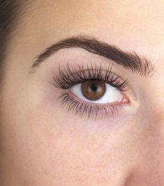 57fb1ca0649 Eyelashes - English Rose Waxbar & Beauty Boutique Semi Permanent Lashes,  Beauty Boutique,